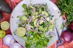 cuba recipes .org - Cuban avocado salad